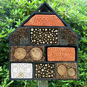 One Of Martins Photos A Wild Bee House